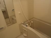 鏡.シャワー付き浴室