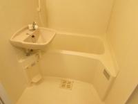 浴室 シャワー 大きな洗面