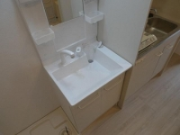 独立洗面、室内洗濯機置場