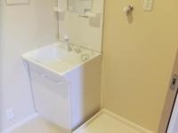 独立洗面台 洗濯機置場
